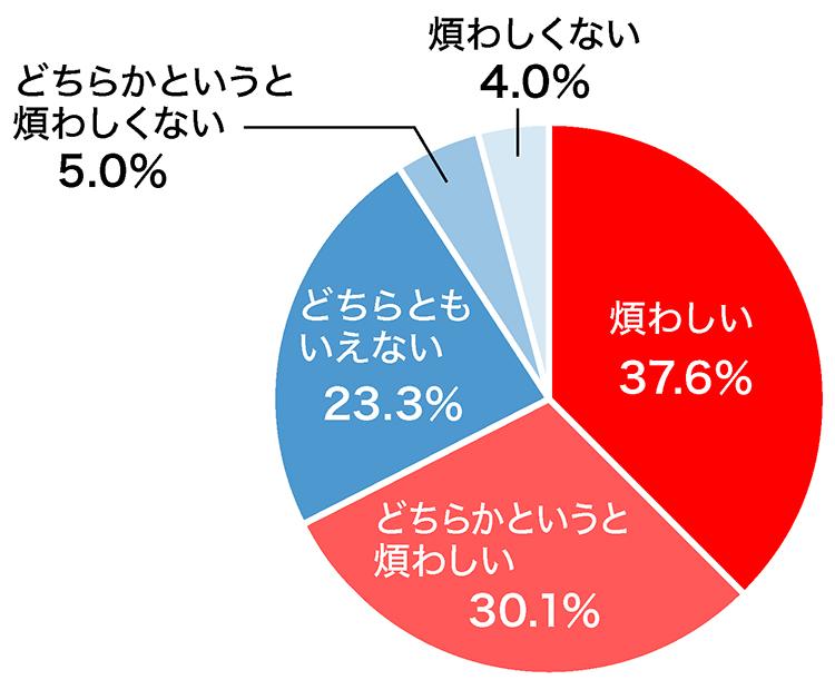 アンケートの円グラフの画像